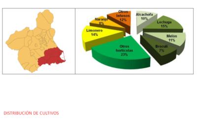 Distribución de cultivos