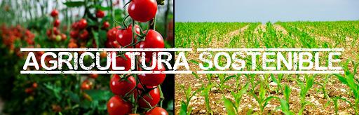 fitocarthago-agricultura